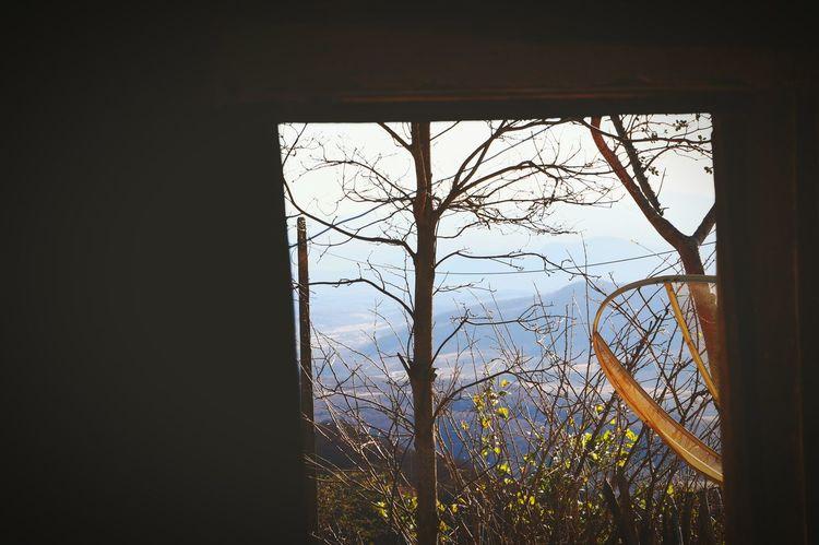 Altura Janela Window Sombra Shadow Natureza Nature Brasil ♥ Brazil Ceará Aratuba Indoors