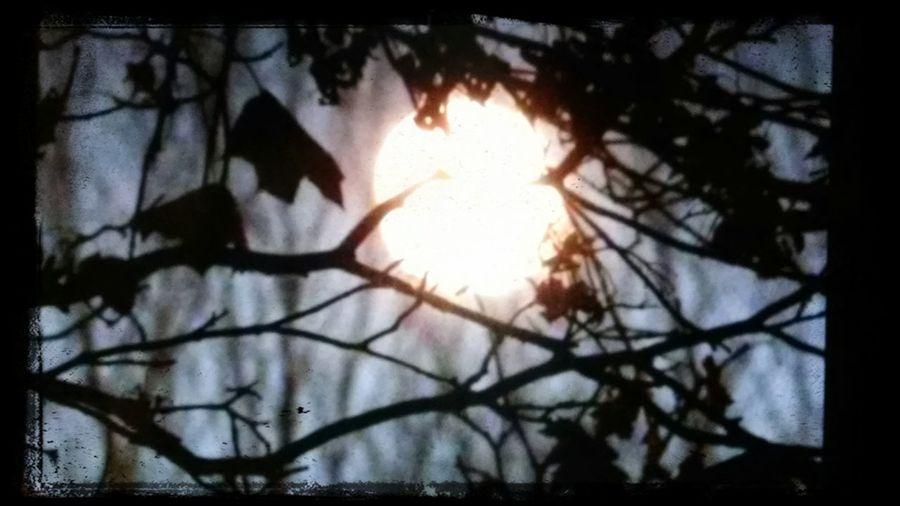 The Moon Sky Collection EyeEm Moon Shots