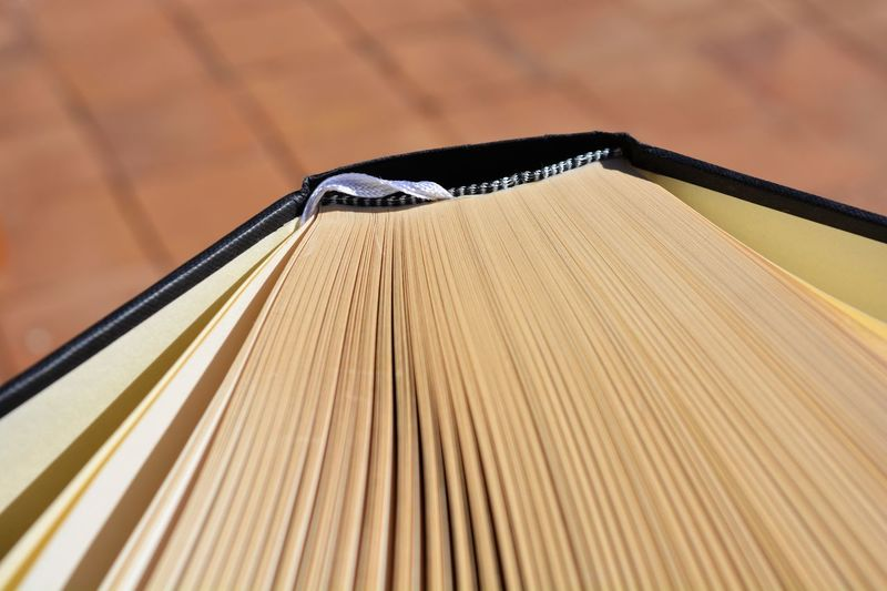 Hardback book, high angle view, pages fanned out. Copy Space Single Object Book Research Scholarship Learning Education Paper Fanned Out Pages Pages Of A Book Hardback Books Hardback No People Close-up Indoors  Office Day