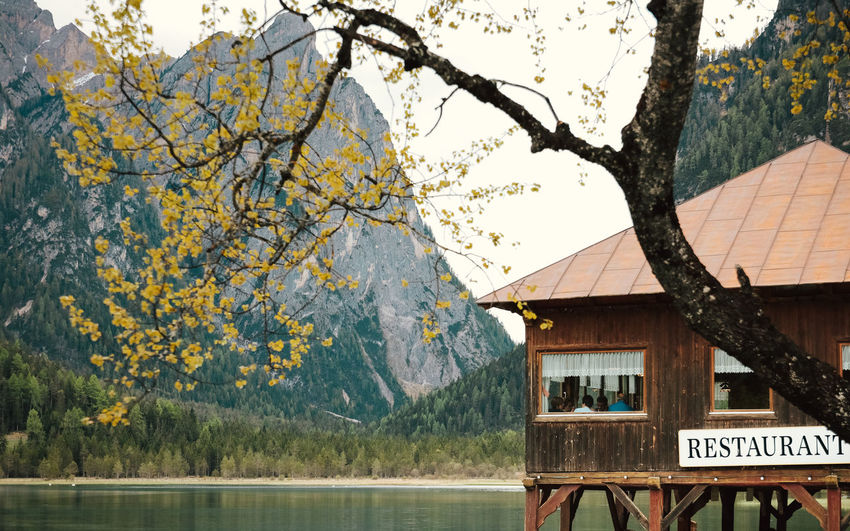 Beauty In Nature Braies Lake Branch Building Exterior Delicate Beauty Eating Eating Out Enjoying Life Having Dinner Having Lunch Lake Lake Shore Lake View Landscape Mountain Nature Outdoors Relaxing Moments Restaurant The Great Outdoors - 2017 EyeEm Awards Tranquil Scene Outdoors Tranquility Tree Tree Trunk Window