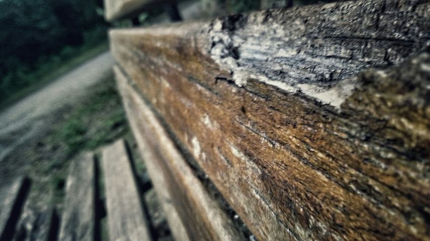 Photography Blur Macro Check This Out Outdoor Photography Old