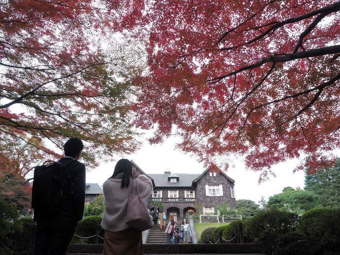 2018/11/29 Thu ☁ 秋は駆け足 見頃の旧古河庭園に紅葉撮影。 手が痛くても撮りたいよね! ファインダー越しの私の世界 ファインダーは私のキャンパス オリンパス Olympus E_M5Mark2 Om_d ミラーレス Photograph Photography Unsquares カメラ日和 お写んぽ 東京カメラ部 スナップ写真 Tokyo あなたに見せたい写真がある Beautiful カメラのある生活 写真は心のシャッター 恋するカメラ 旧古河庭園 秋は駆け足 Tree Branch Sky Architecture Building Exterior Built Structure