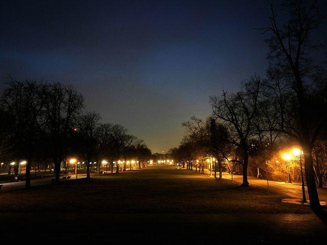 Nature Outdoors Night Nightphotography Night Lights Sofia, Bulgaria Borisovagradina Borisova Борисова градина