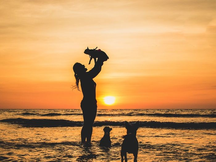 Silhouette woman with dogs at beach against sky during sunset