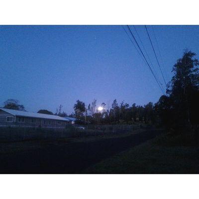 Morning Moon Puna Myhome Lovemyhawaii NoEdits  Allnatural Nature Bigislandlove HiLife 808love Beautifulxhi Theneighborshouse Simplethings