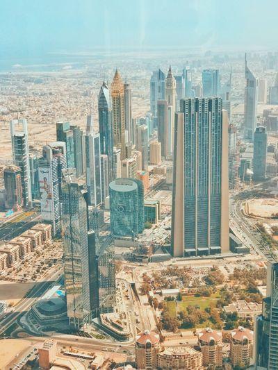 Sheil Zayed