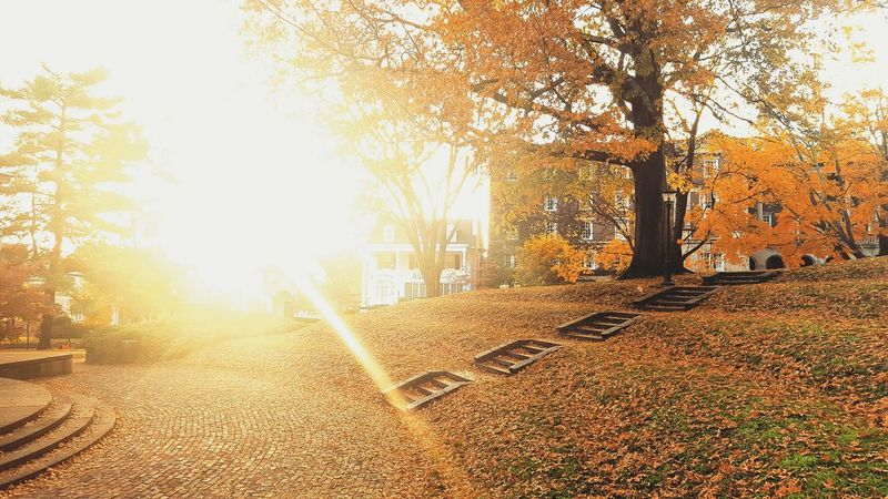 Ohio University: A Wonderland of Beauty First Eyeem Photo