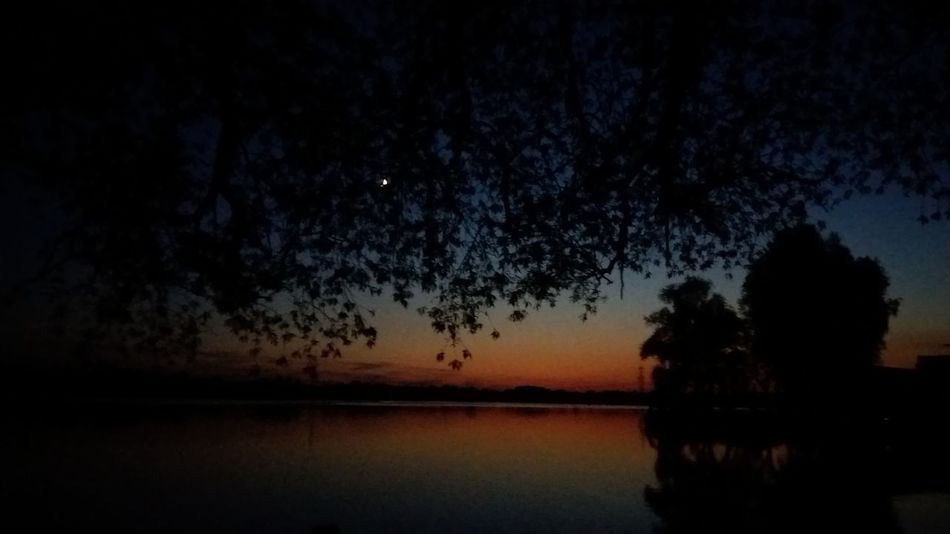 Nighttime at my fishing spot Havel River Havelradweg Beauty In Nature Fishing Spot Havel Lake Nature Night No People Outdoors Reflection Scenics Silhouette Sky Sunset Tranquil Scene Tranquility Tree Water An Eye For Travel HUAWEI Photo Award: After Dark