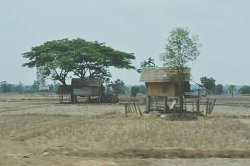 In Laos Laos, Lao Trip Laos Collection Memories Of Laos Country Life Countryside Nature Nature_collection