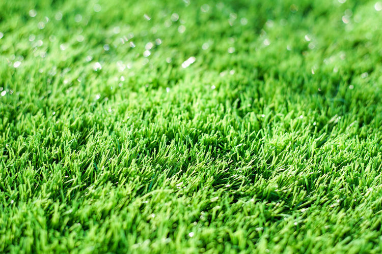 Backgrounds Beauty In Nature Close-up Day Field Full Frame Grass Green Green Color Lawn Nature No People Outdoors Playing Field Soccer Field