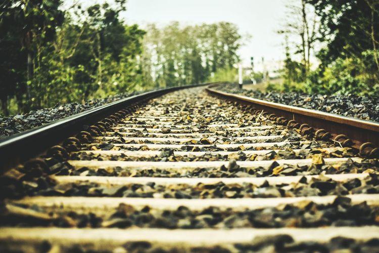 Life on rails
