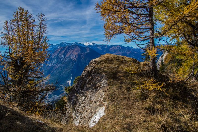 col of lien,valais,swiss Tree Plant Mountain Scenics - Nature Beauty In Nature Land No People Sky Environment Landscape Nature Cloud - Sky Tranquility Mountain Range Day Outdoors Forest Tranquil Scene Autumn Rock Mountain Peak