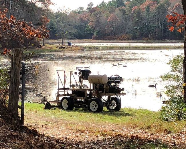 Machine used to loosen the Cranberry from its plant. It's driven through the bog. Tree Plant Day Land Vehicle Nature Field Tractor