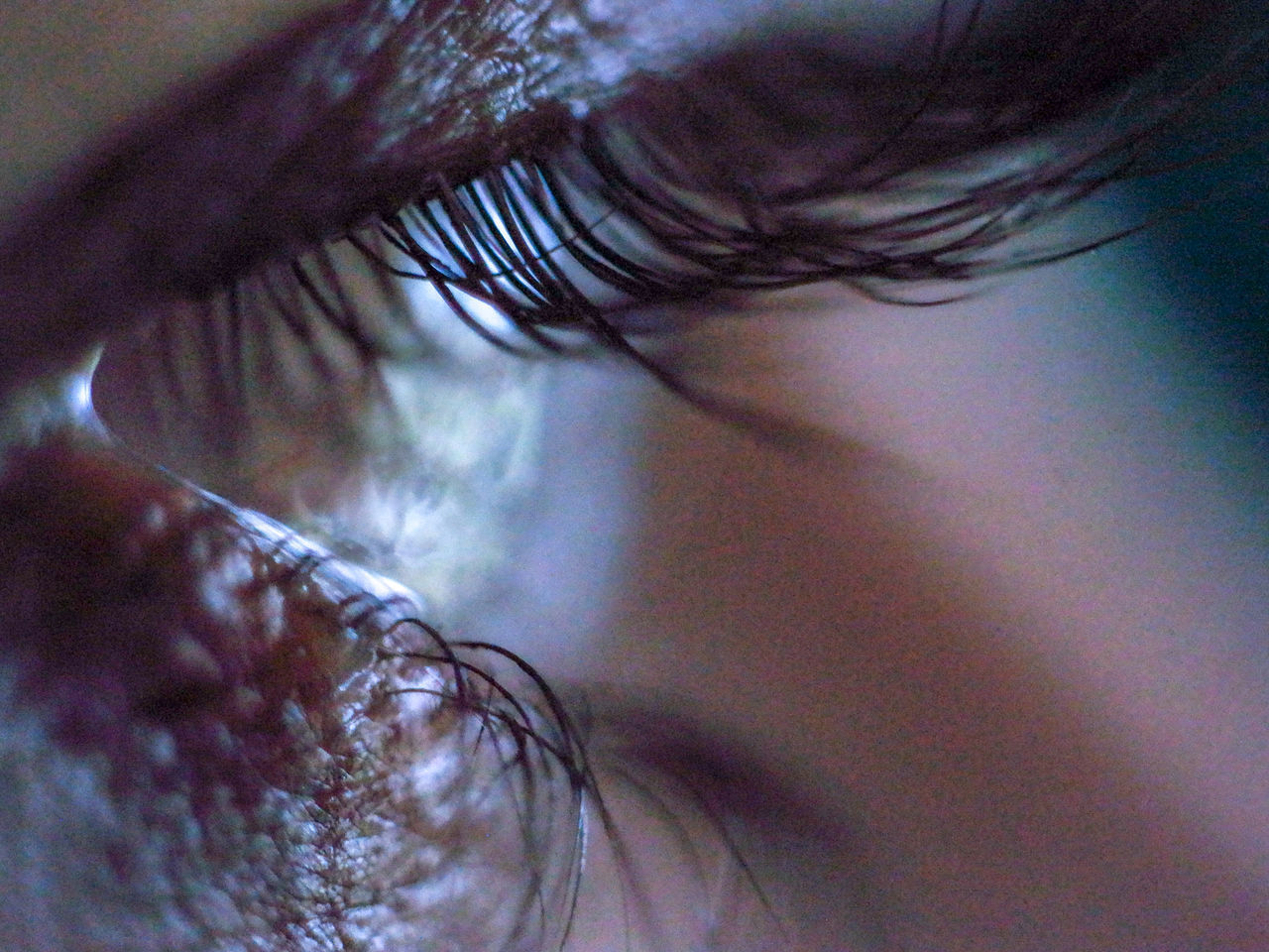 EXTREME CLOSE-UP OF WOMAN EYE WITH HAIR