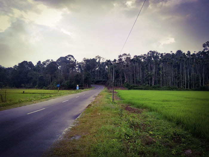 the road to.... EyeEm Nature Lover EyeEm Gallery EyeEm Gallery EyeEm Best Shots - Nature Eyemphotography Coorgdiaries Coorg_trip Coorg Tree Sky Grass Cloud - Sky Green Color vanishing point Pathway Country Road Countryside Road Empty Road Diminishing Perspective Treelined The Way Forward