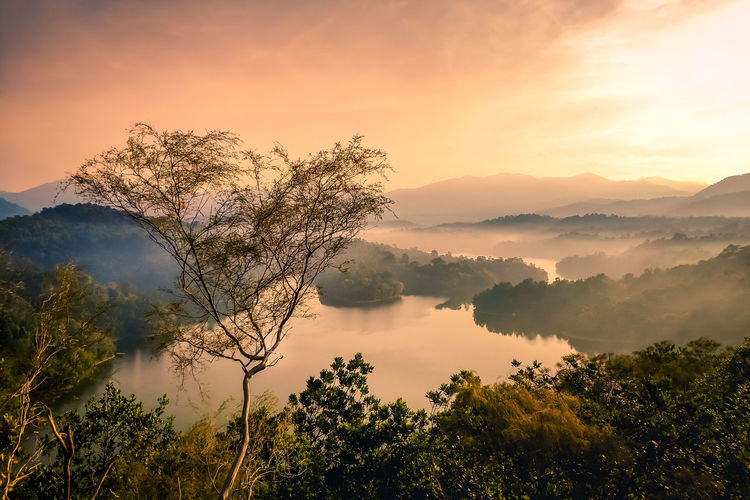 Bukit Tabur Beauty In Nature Scenics - Nature Tranquil Scene Tranquility Tree Plant Sky Sunset Non-urban Scene Mountain Fog Idyllic No People Nature Cloud - Sky Growth Water Remote Outdoors Hazy  Vacations View Backgrounds Kuala Lumpur River