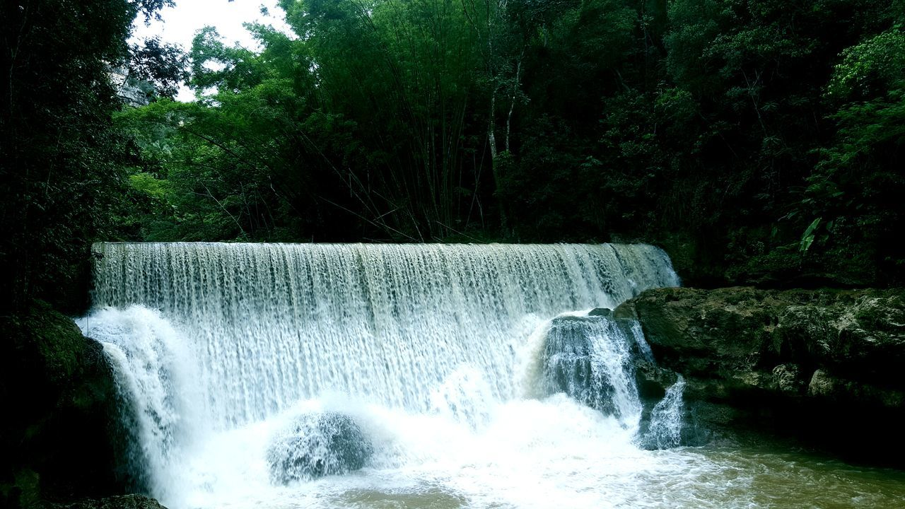 waterfall, motion, water, tree, forest, long exposure, nature, beauty in nature, no people, day, scenics, outdoors