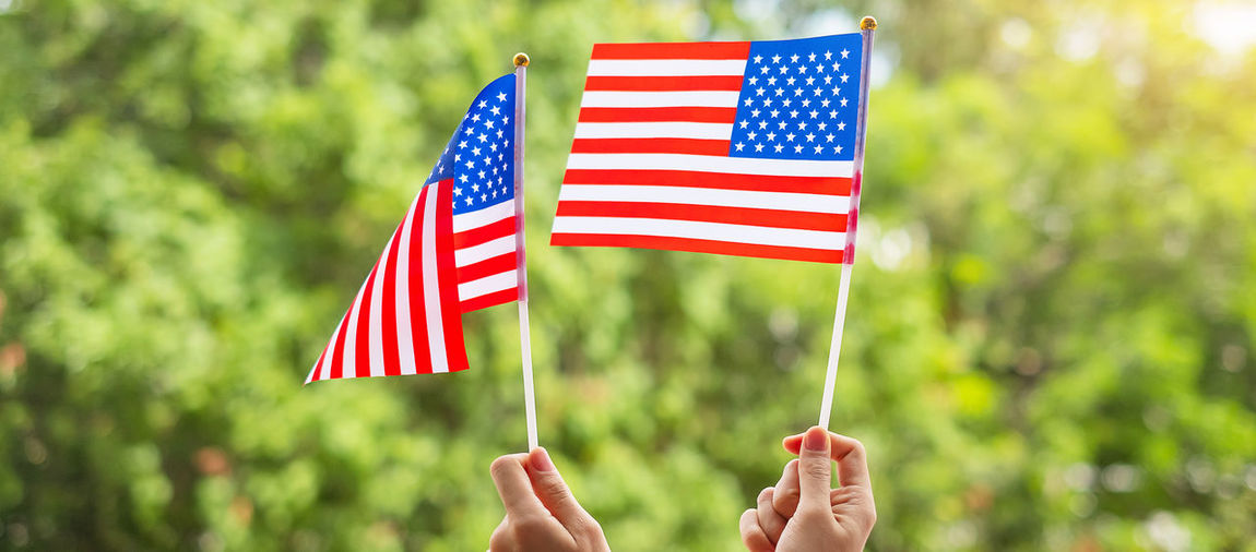 Cropped image of hand holding flag