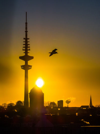 Silhouette bird flying over buildings against sky during sunset