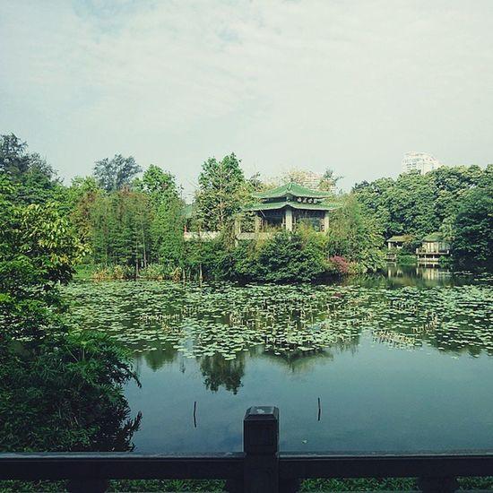 早晨... Canton Guangzhou China