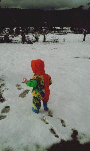 Snow Winter Wonderland Being A Kid Walking Around Tassie Tasmania
