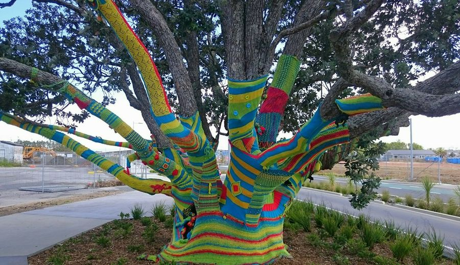 This was a community project by local crochet and knitters. This is the other side of the tree :) Hugging A Tree Tree Art Knitting Crochet Colours Sony Xperia Z3 Compact Street Art Knitting Graffitti Yarn Bombing Check This Out