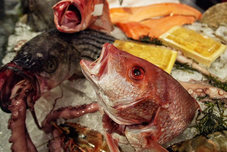 Close-Up Of Fish In Market