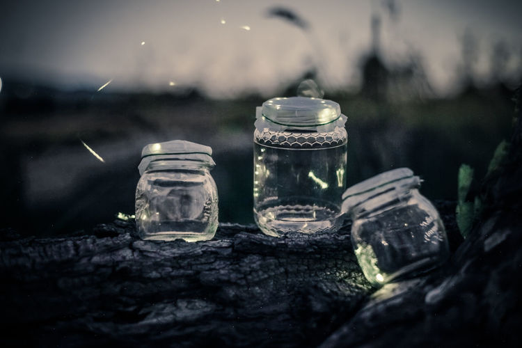Glowing fireflies on container on rock at dusk
