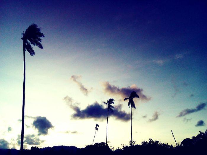 Sunset Cloud.