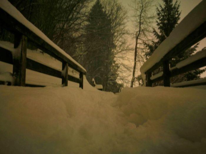 Im Winter,