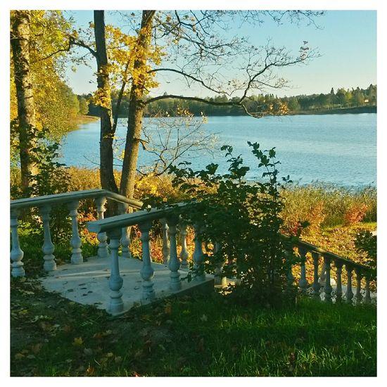 краски осени озеро Autumn Colors осень Autumn Fall VSCO EyeEm Latvia латвия Romantic place 💛🍁🍂