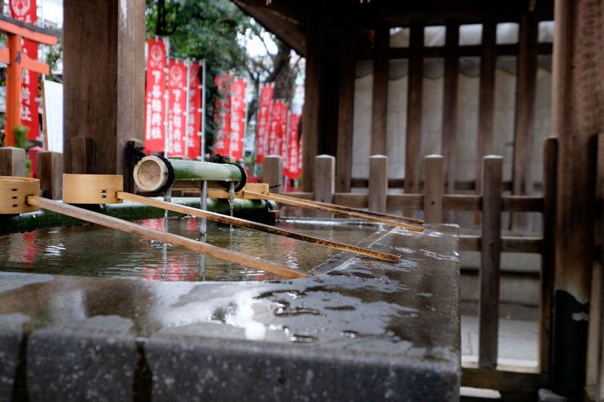 下谷神社 Duck Fujifilm Fujifilm X-E2 Fujifilm_xseries Japan Japan Photography Shitaya Jinja Shrine Shrine Tokyo Ueno Water アヒル 上野 下谷神社 手水舎 東京 狛犬 神社 稲荷町 水 ちょうずや
