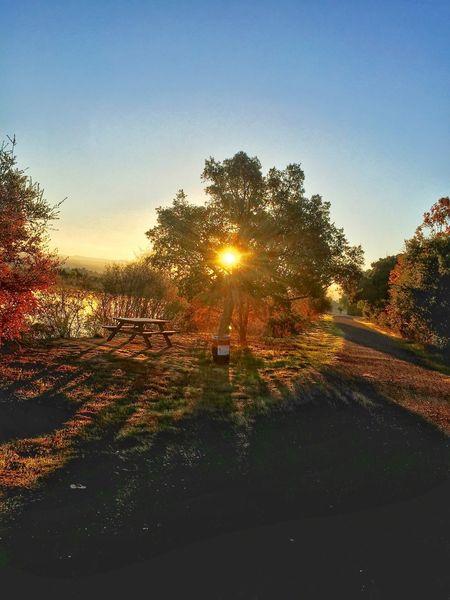 Sunrise Surprise Enjoying Life