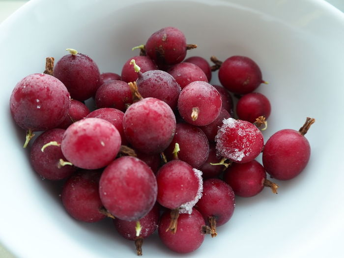 Gooseberries. Gooseberries Gooseberry Frozen Food Fruit Healthy Eating Red Food And Drink Freshness Food No People Close-up Healthy Lifestyle Indoors  Day Ready-to-eat