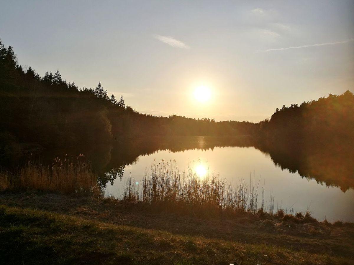 MTB Biking Nature Sun Is Life