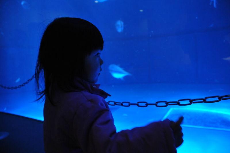 Girl looking at aquarium