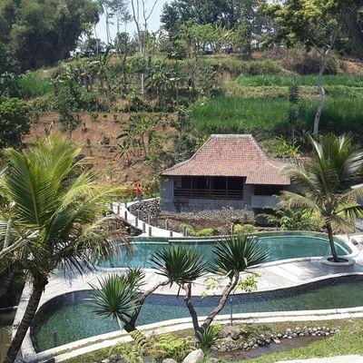 Resort Kampunglumbung Batu Malang