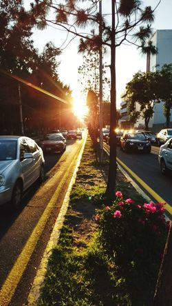 Car Road Transportation Street Land Vehicle Traffic City Street Mode Of Transport Outdoors Tree City No People Sunlight Sunset Day Sky Nature
