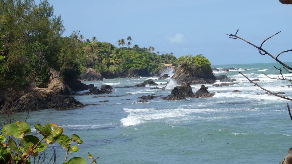 Trinidad And Tobago Toco Samsung Kzoom No Edit/no Filter Taking Photos At The Beach