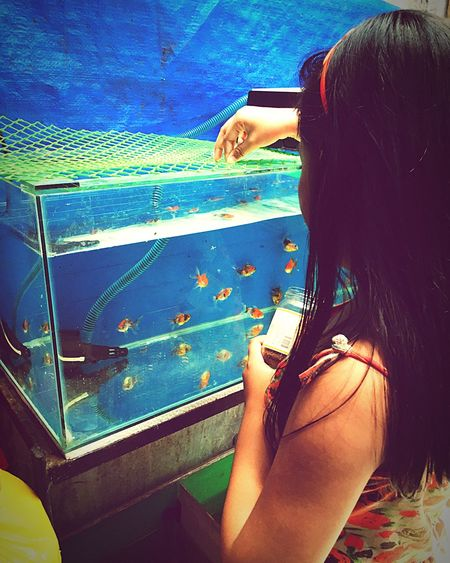 EyeEm Selects Real People Rear View One Person Leisure Activity Women Lifestyles Day Outdoors Young Adult Close-up Adult People GoldFish! Goldfish In Water Blue Water Beauty In Nature Aquarium Animals In Captivity Pet Portraits