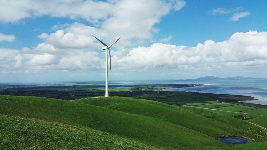 Wind turbines on field