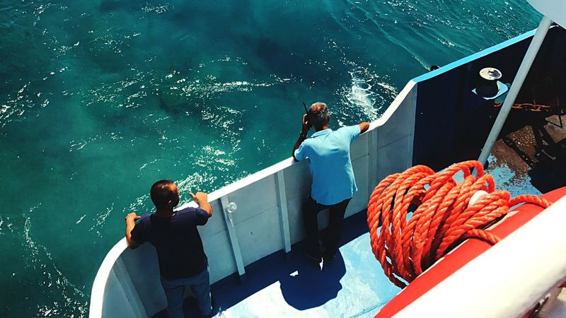 High Angle View Nautical Vessel Water Sea Boat Transportation Mode Of Transport Fish Fishing Real People Day Men Nature Outdoors Sitting Underwater Boat Deck Sea Life Only Men Beauty In Nature