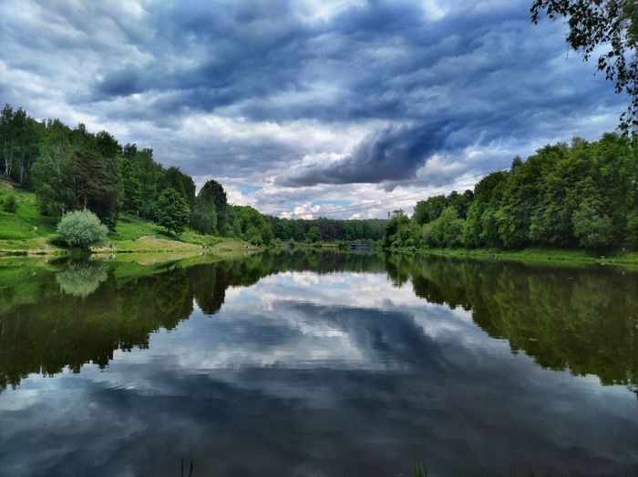 Pond in cloudy weather Tree Day Pond Summer Sommergefühle