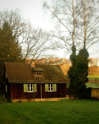 My dream cottage Cottage Cottage Life Nature Photography Hanging Out Hessia Wooden House