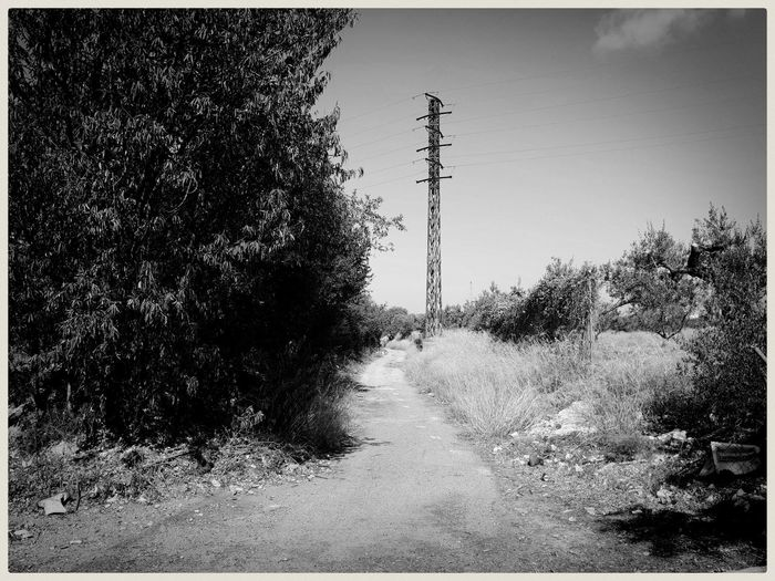 Lonely path. Mobilephotography Samsungphotography Ace5 Kultcamera Blackandwhite Monochrome Monochrome World vanishing point Light And Shadow Road Power Cable