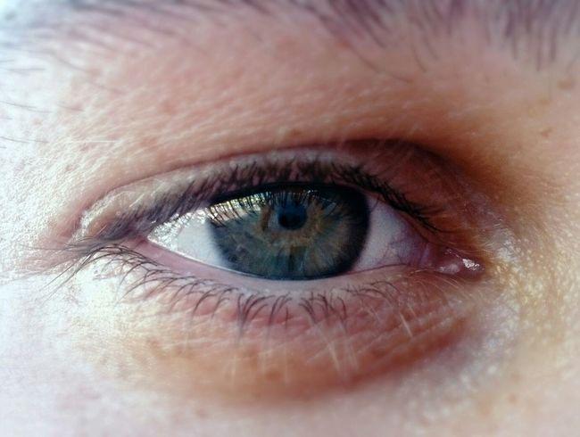 Матвей из Турции. )) Eyes Green Eyes Beautiful My_collection My_foto