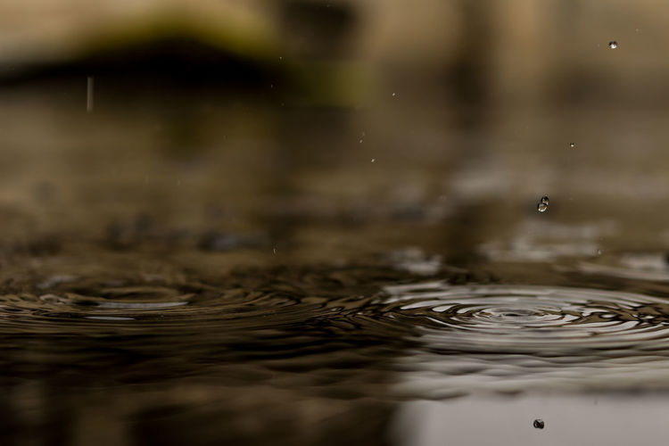 Rain RainDrop Drops Of Water Canonphotography Close-up Outdoors No People Canon80d Droplets Raindrops Blurred Motion Canon Eos  Canon Eos  Canon Eos  EyeEm Gallery 50mm F1.8 Rainy Days The Week On EyeEm Canon18-135