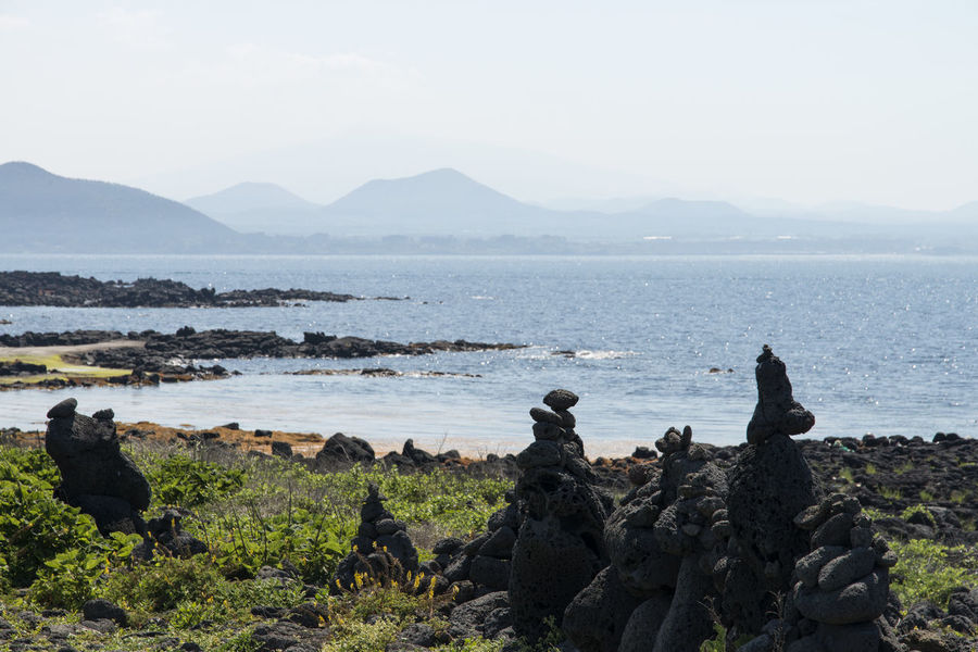 seaside view of Udo Island in Jeju Island, South Korea Animal Themes Animals In The Wild Beach Beauty In Nature Bird Cormorant  Day Horizon Over Water JEJU ISLAND  Lava Mammal Mountain Nature No People Outdoors Rock - Object Scenics Sea Seaside Sky Tranquil Scene Tranquility Udo Island Water