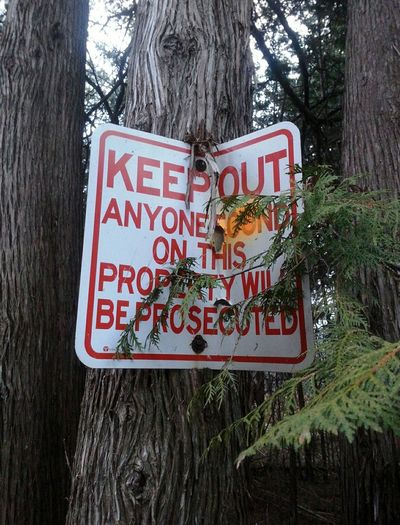Sign on Tree No Trespassing anyone Beyondthis Point will be Prosecuted
