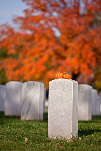 View of cemetery on field during autumn